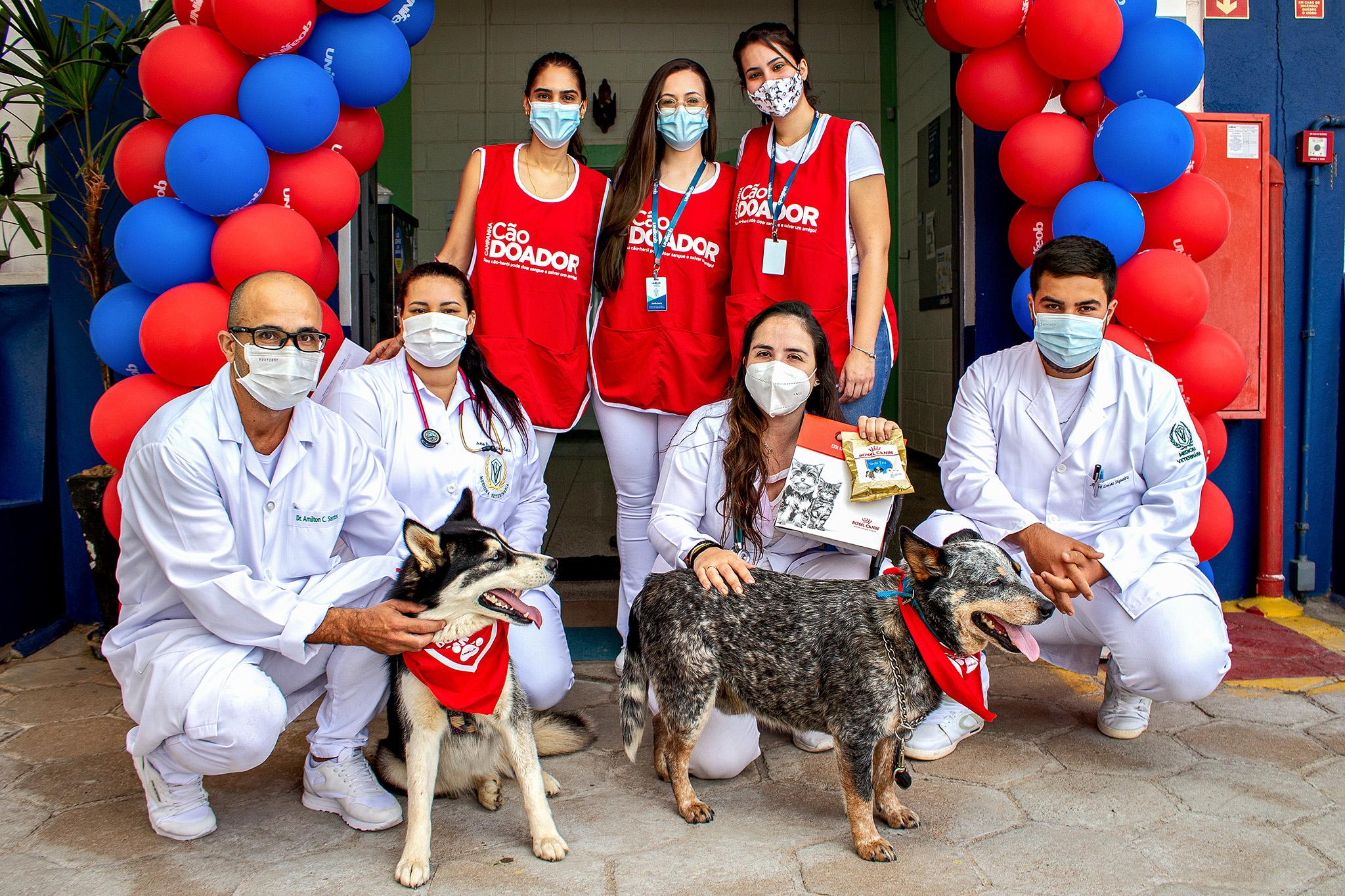 Campanha Cão Doador acontece no Hospital Veterinário Unifeob